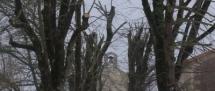 Fors Neige février 2012 (3)