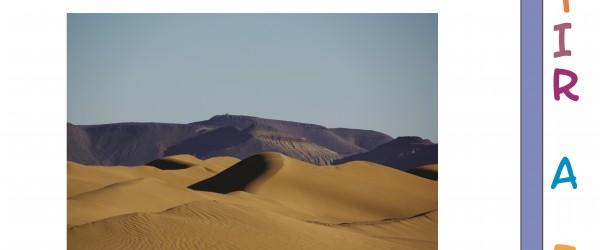 un regard sur le désert