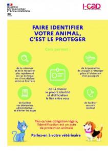 Faire identifier votre animal_Page_1